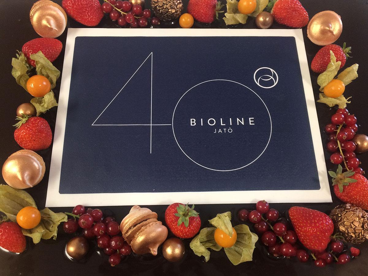 tort-corporate-bioline-brasov-1
